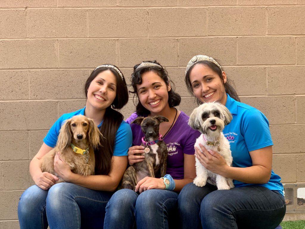 Happy Pets Palace Tiara Sisters
